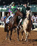 """LEXINGTON, KY - October 11, 2017. #2 Rushing Fall and jockey Javier Castellano win the 27th running of the JPMorganChase Jessamine Grade 3 $150,000 """"Win and You're In Breeders' Cup Juvenile Fillies Turf Division"""" for owner E Five Racing Thoroughbreds (Robert Edwards Jr.) and trainer Chad Brown at Keeneland Race Course.  Lexington, Kentucky. (Photo by Candice Chavez/Eclipse Sportswire/Getty Images)"""