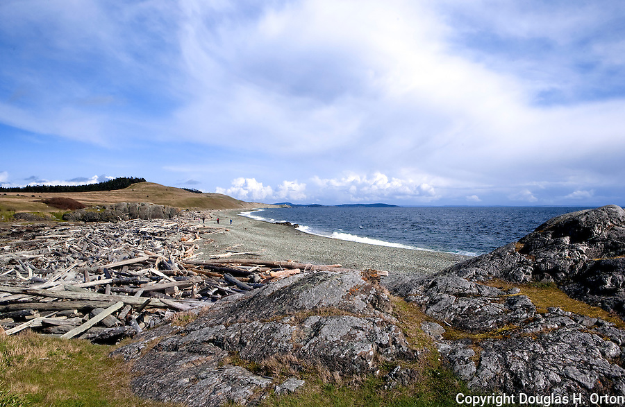 South Beach, in American Camp National Historic Park, has the longest walkable beach on San Juan Island.  From headlands in the north to diminutibve Cattle Point Lighthouse seen in the far south, the beach rivals any other on the Pacific Coast.  Here, Diminutive Cattle Point Lighthouse marks the entrance to Cattle Pass, and for many mariners the entrance to the San Juan Island.  Lopez Island in the near foreground, Whidbey Island in the far background.  Cattle Point Interpretive area between Cattle Point Road and Haro Strait.