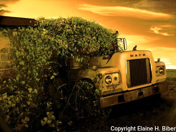 Antique cars, trucks, equipment