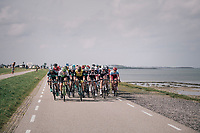 peloton riding on top of the dykes<br /> <br /> 106th Scheldeprijs 2018 (1.HC)<br /> 1 Day Race: Terneuzen (NED) - Schoten (BEL)(200km)