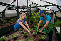 BNPS.co.uk (01202) 558833<br /> Pic: BNPS<br /> <br /> Pictured: Antonio Paladino and Amanda Heron farm organically-fed rainbow trout and uses their waste to grow about 50 different fruits and vegetables without the need for soil.<br /> <br /> Something fishy or food for thought?<br /> <br /> A chef turned farmer is leading the way in sustainable farming by using fish poo as fertiliser.<br /> <br /> Antonio Palladino farms organically-fed rainbow trout and uses their waste to grow about 50 different fruits and vegetables without the need for soil.<br /> <br /> He says using fish waste as fertiliser is the most sustainable farming method and produces a bigger and much tastier crop.