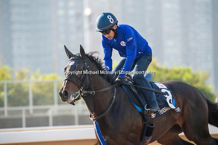 SHA TIN, HONG KONG – December 4:Persian Knight at trackwork on December 4 at Sha Tin Race Course in Hong Kong before starting in the Longines Hong Kong Mile. Michael McInally/Eclipse Sportswire/CSM