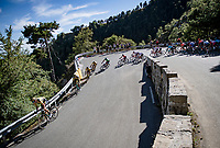 peloton down the Col de Turini<br /> <br /> Stage 2 from Nice to Nice (186km)<br /> <br /> 107th Tour de France 2020 (2.UWT)<br /> (the 'postponed edition' held in september)<br /> <br /> ©kramon