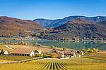 Italy, Alto Adige - Trentino (South Tyrol), Lago di Caldaro, picturesque hills surrounding the Lake of Caldaro | Italien, Suedtirol, malerische Huegellandschaft um den Kalterer See