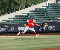 David Calabrese - 2021 Arizona League Angels (Bill Mitchell)