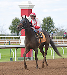 Scenes from around the track on Shadwell Turf Mile Stakes Day on October 04, 2014 at Keeneland in Lexington, Kentucky.  (Bob Mayberger/Eclipse Sportswire)