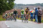 Team 3m, Arnhem Veenendaal Classic , UCI 1.1, Posbank, Rheden, The Netherlands, 22 August 2014, Photo by Thomas van Bracht / Peloton Photos