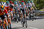 The peloton in action during Stage 3 of Tour de France 2020, running 198km from Nice to Sisteron, France. 31st August 2020.<br /> Picture: Bora-Hansgrohe/BettiniPhoto | Cyclefile<br /> All photos usage must carry mandatory copyright credit (© Cyclefile | Bora-Hansgrohe/BettiniPhoto)