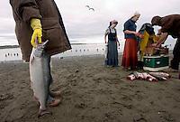 Dipnet Salmon Fishing