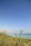 Ein Metzokei Dragot by the Dead Sea