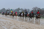 February 22, 2015: Post Parade prior to the running of the South West Stakes (Grade III) at Oaklawn Park in Hot Springs, AR. Justin Manning/ESW/CSM