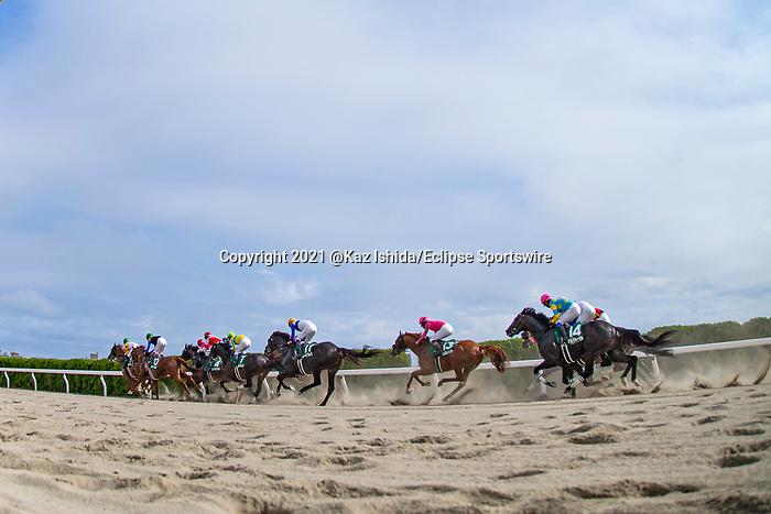 HAKODATE,JAPAN-AUG 8: Horses run on the dirt track in the Elm Stakes at Hakodate Racecourse on August 8,2021 in Hakodate,Hokkaido,Japan. Kaz Ishida/Eclipse Sportswire/CSM