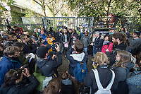Nach Willen der zustaendigen Senatsstellen sollen die Fluechtlinge in der Gerhard-Hauptmann-Schule in Berlin-Kreuzberg das Gebaeude bis Ende Oktober raeumen. Auf einer Pressekonferenz vor dem von einem Sicherheitsdienst abgsperrten Schulgelaende erklaerten sie am Dienstag den 21. Oktober 2014, dass sie bleiben wollen. Dies war ihnen urspruenglich auch zugesagt worden.<br /> Unterstuetzung bekommen sie dabei von Berliner Kulturinstitutionen und von der Nachbarschaftsinitiative in der Ohlauer Straße in Kreuzberg.<br /> 21.10.2014, Berlin<br /> Copyright: Christian-Ditsch.de<br /> [Inhaltsveraendernde Manipulation des Fotos nur nach ausdruecklicher Genehmigung des Fotografen. Vereinbarungen ueber Abtretung von Persoenlichkeitsrechten/Model Release der abgebildeten Person/Personen liegen nicht vor. NO MODEL RELEASE! Don't publish without copyright Christian-Ditsch.de, Veroeffentlichung nur mit Fotografennennung, sowie gegen Honorar, MwSt. und Beleg. Konto: I N G - D i B a, IBAN DE58500105175400192269, BIC INGDDEFFXXX, Kontakt: post@christian-ditsch.de<br /> Urhebervermerk wird gemaess Paragraph 13 UHG verlangt.]