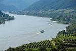 Austria, Lower Austria, Danube near Spitz: wine growing region at UNESCO World Heritage Wachau