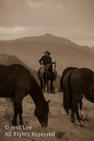 pre dawn Cowboys working and playing. Cowboy Cowboy Photo Cowboy, Cowboy and Cowgirl photographs of western ranches working with horses and cattle by western cowboy photographer Jess Lee. Photographing ranches big and small in Wyoming,Montana,Idaho,Oregon,Colorado,Nevada,Arizona,Utah,New Mexico. Fine Art Limited Edition Photography Of American Cowboys and Cowgirls by Jess Lee