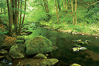 The River South Esk, Gore Glen, Dalkeith, Midlothian