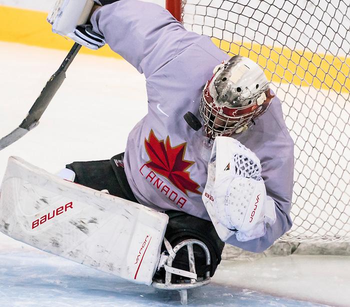 Dominic Larocque, PyeongChang 2018. Para Ice Hockey // Para-hockey sur glace.<br /> Canada's sledge hockey team practices ahead of the start of competition // L'équipe canadienne de Para-hockey sur glace s'entraîne avant le début de la compétition. 08/03/2018.