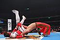 Pro Wrestling : New Japan Pro-Wrestling : Tiger Mask