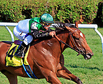 Proctor's Ledge (no. 4) wins the Lake Placid Stakes (Grade 2) for three year old fillies August 19 at Saratoga Race Course, Saratoga Springs, NY.  The winner, ridden by Javier Castellano and trained by Brendan Walsh, held off Uni by  3/4 lengths in the 1 1/8 mile turf race against 4 opponents.  (Bruce Dudek/Eclipse Sportswire)