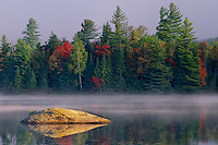 Eastern white pines and red maples<br /> Lake Durant<br /> Adirondack Park<br /> Adirondack Mountains,  New York