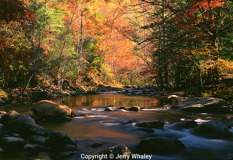 Autumn, Little River, Tremont, Great Smoky Mountains NP, TN