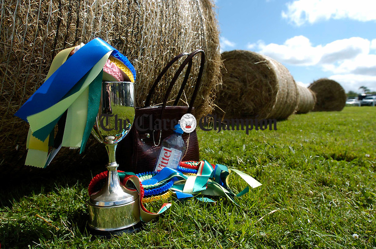 The spoils of battle await their victors at the County Clare Agricultural Show in Ennis. Photograph by John Kelly.