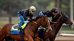 October 22, 2021: Gamine works in company with Azul Coast in preparation for the Breeders Cup Filly and Mare Sprint at Santa Anita Park in Arcadia, California on October 23, 2021. Evers/Eclipse Sportswire/CSM