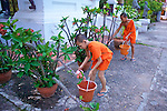 Young Monks Watering Plants