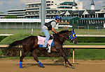 LOUISVILLE, KY - APRIL 25: Venus Valentine (Congrats x Valentine Fever, by Stormin Fever) gallops at Churchill Downs, Louisville KY with rider Maurice Sanchez in preparation for the Kentucky Oaks. Owner Rosemont Farm LLC, trainer Thomas A. Amoss. (Photo by Mary M. Meek/Eclipse Sportswire/Getty Images)