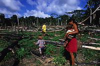 BRAZIL, Amazon, rainforest, Madiha or Kulina indios in village Sossego at river Bau a branch of river Jurua, woman with child in manioc field / BRASILIEN, Amazonas, abgeholzter Regenwald, Indianer vom Stamm der Madiha auch Kulina im Indianerdorf Sossego am Fluss Bau ein Nebenfluss des Jurua, Frau mit Kind in einem Maniok Feld