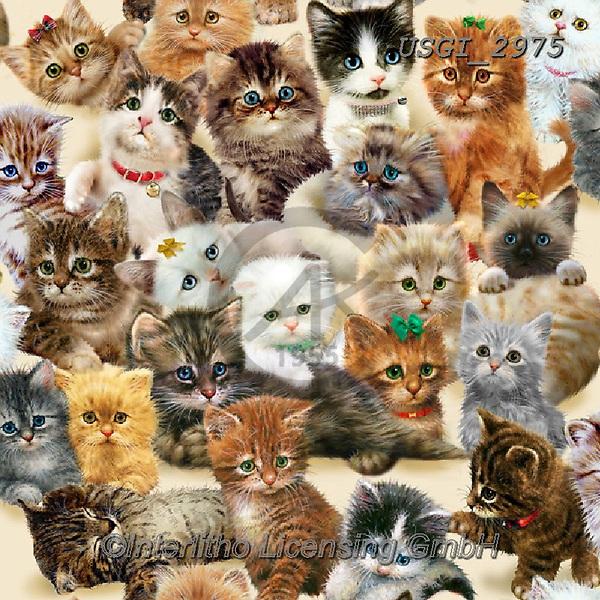 GIORDANO, GIFT WRAPS, GESCHENKPAPIER, PAPEL DE REGALO, paintings+++++,USGI2975,#gp#, EVERYDAY, kittens