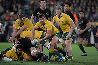 Wallabies' Nick Phipps in action during the All Blacks v Wallabies. The Rugby Championship & Bledisloe Cup at Westpac Stadium, Wellington, New Zealand on Saturday 27 August 2016.<br /> Photo by Masanori Udagawa. <br /> www.photowellington.photoshelter.com.