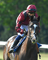 Escape The City ridden by Jim Crowley goes down to the start of The AJN Steelstock Beckie Lawrence Handicap  during Horse Racing at Salisbury Racecourse on 9th August 2020
