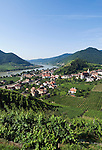 Austria, Lower Austria, Spitz at river Danube: wine growing region at UNESCO World Heritage Wachau