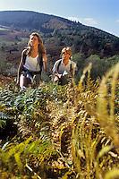 Europe/France/Limousin/87/Haute Vienne: Randonnée dans le Parc Naturel Régional de Millevaches en Limousin