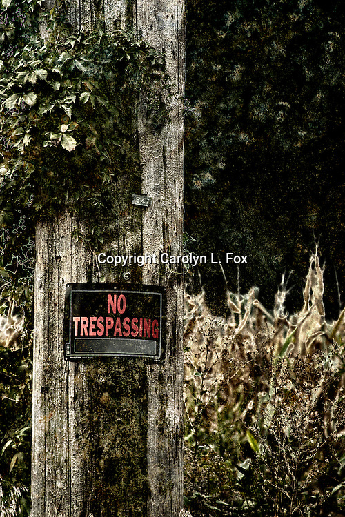 A no trespassing sign is nailed to a tree in Kansas.