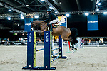 Session 4 and the Prestige Village tour of the Asia Horse Week activties for the Longines Masters of Hong Kong at AsiaWorld-Expo on 08 February 2018, in Hong Kong, Hong Kong. Photo by Christopher Palma / Power Sport Images