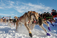 Sled Dogs are running out of the chute on Willow Lake at the Official Start of the 2018 Iditarod Sled Dog Race in Willow, Alaska on March 04, 2018. <br /> <br /> Photo by Jeff Schultz/SchultzPhoto.com  (C) 2018  ALL RIGHTS RESERVED