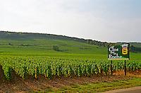 The Clos de la Roche Grand Cru vineyard and sign in Morey Saint Denis, Bourgogne