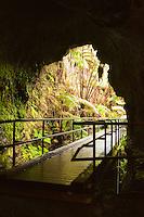 Thurston Lava Tube, Hawai'i Volcanoes National Park, Kilauea, Big Island.