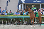 January 18, 2020: #5 Royal Squeeze with jockey Paco Lopez on board is a contender in the Sunshine Millions Sprint Stakes Black Type at Gulfstream Park in Hallandale Beach, Florida, on January 18th, 2020. LizLamont/Eclipse Sportswire/CSM