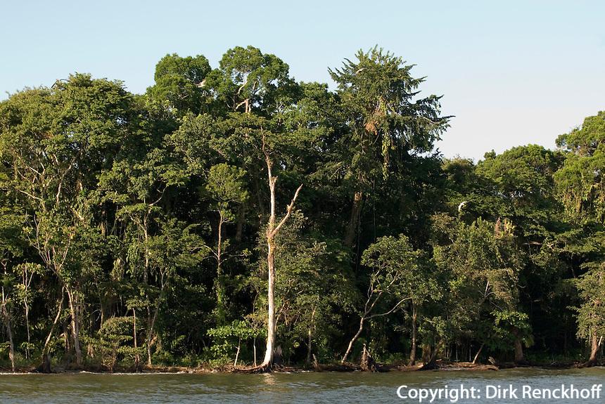Guatemala, Küste der Amatique Bay am  Golf von Honduras