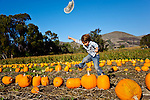 Playing in the pumkin patch, San Luis Obispo, California