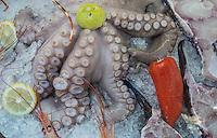 Seafood for sale on Kastellorizo, Greece