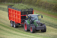7.5.2021 Carting chopped grass silage back to the clamp in Cambridgeshire <br /> ©Tim Scrivener Photographer 07850 303986<br />      ....Covering Agriculture In The UK....