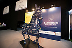 Asia Horse Week activties for the Longines Masters of Hong Kong at AsiaWorld-Expo on 08 February 2018, in Hong Kong, Hong Kong. Photo by Christopher Palma / Power Sport Images