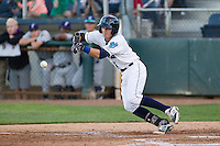 Jordan Cowan #3 of the Everett AquaSox lays down a bunt during a game against the Tri-City Dust Devils at Everett Memorial Stadium in Everett, Washington on July 28, 2014. Tri-City defeated Everett 6-5 in 11 innings.  (Ronnie Allen/Four Seam Images)