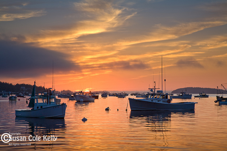 Fishing boats at sunrise in Stonington Harbor, Stonington, ME, USA