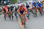 The peloton in action during Stage 8 of the 2015 Presidential Tour of Turkey running 124km from Istanbul to Istanbul. 3rd May 2015.<br /> Photo: Tour of Turkey/Mario Stiehl/www.newsfile.ie
