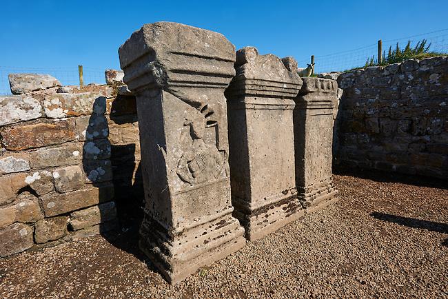 Hadrians Wall near Houseteads Roman Fort, A UNESCO World Heritage Site, Northumberland, England, UK